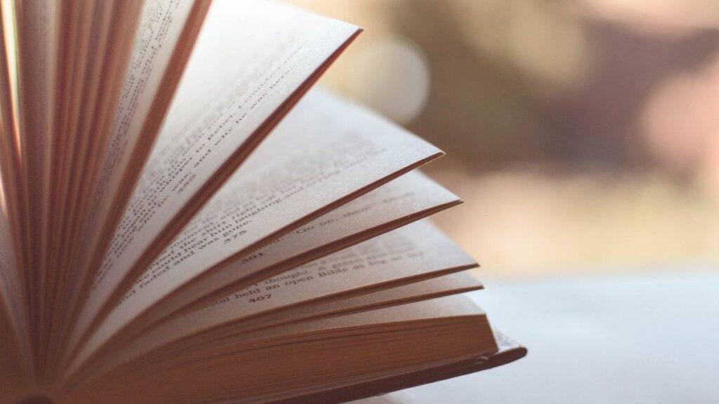 Elementos internos de un libro