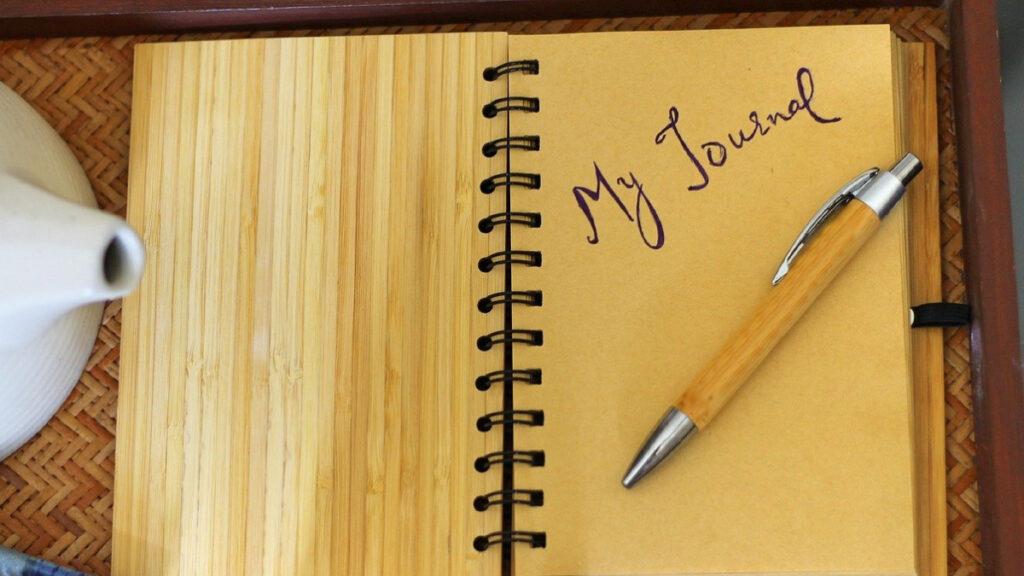 tipos de journal